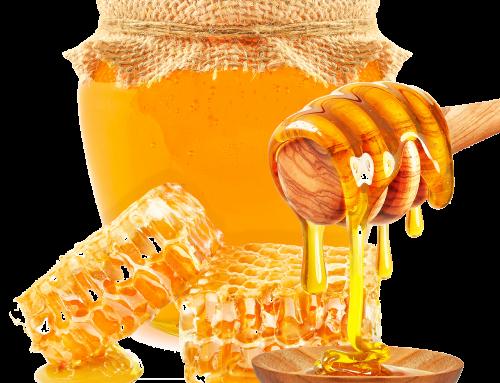 فروش عسل گون طبیعی به صورت اینترنتی