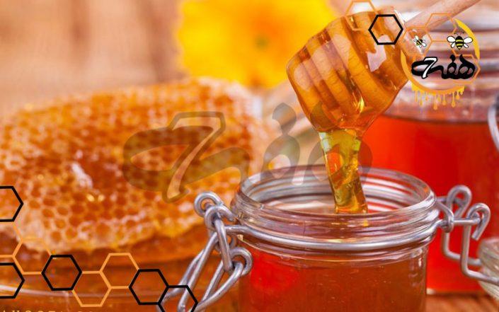 خرید بهترین عسل طبیعی